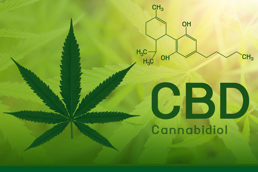 CBD Explained Cannabidiol